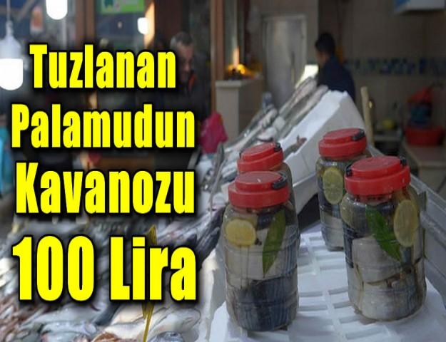 Tuzlanan Palamudun Kavanozu 100 Lira