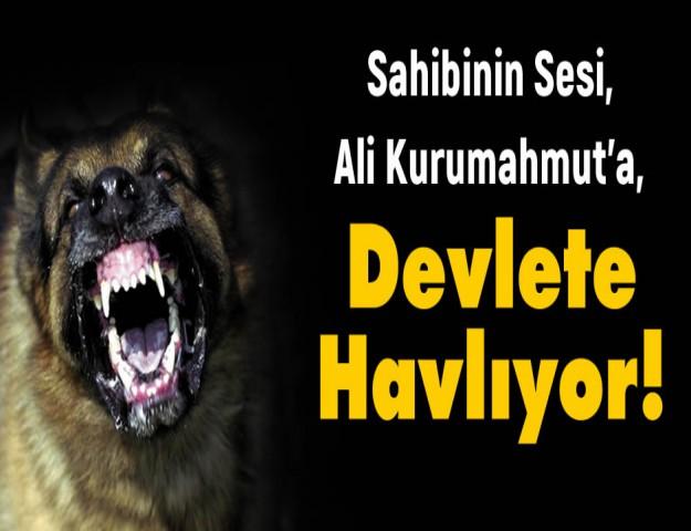 Sahibinin Sesi, Ali Kurumahmut'a Şimdi de Devlete Havlıyor