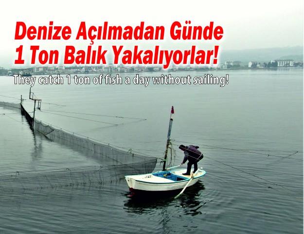 Denize Açılmadan Günde 1 Ton Balık Yakalıyorlar!