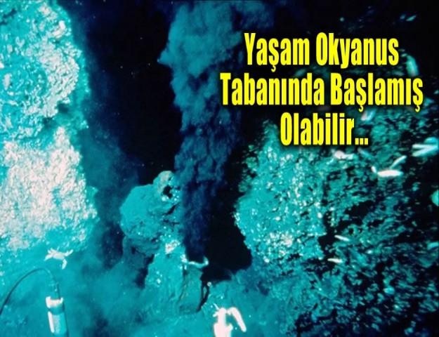 Yaşam Okyanus Tabanında Başlamış Olabilir...