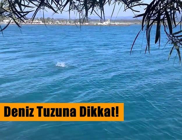Deniz Tuzuna Dikkat!