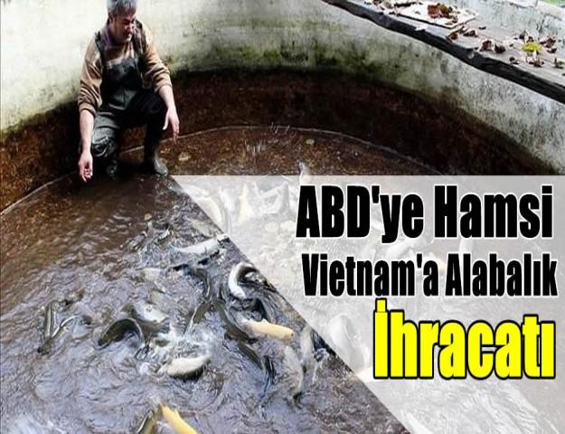 ABD'ye Hamsi Vietnam'a Alabalık İhracatı