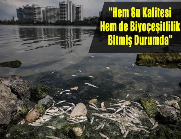 ''Hem Su Kalitesi Hem de Biyoçeşitlilik Bitmiş Durumda''