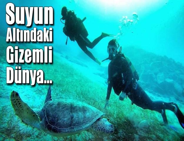 Suyun Altındaki Gizemli Dünya...