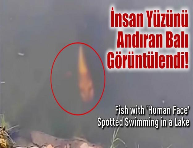 İnsan Yüzünü Andıran Balık Görüntülendi!