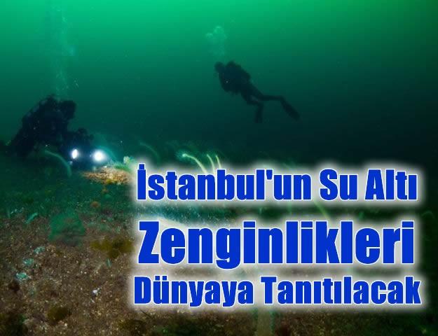 İstanbul'un Su Altı Zenginlikleri Dünyaya Tanıtılacak