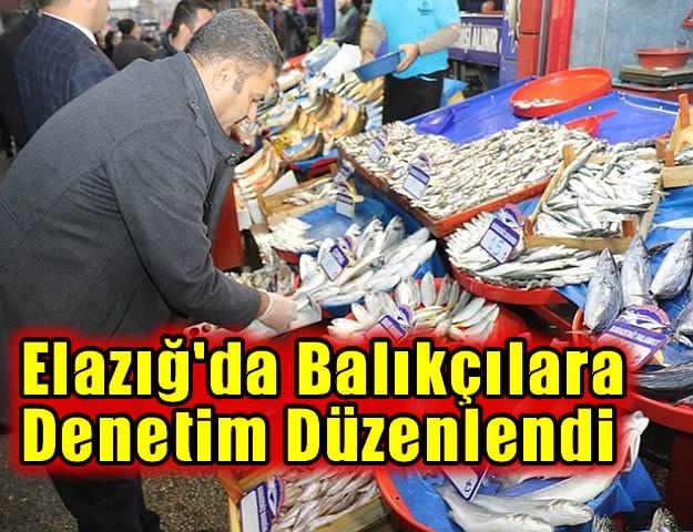 Elazığ'da balıkçılara denetim..