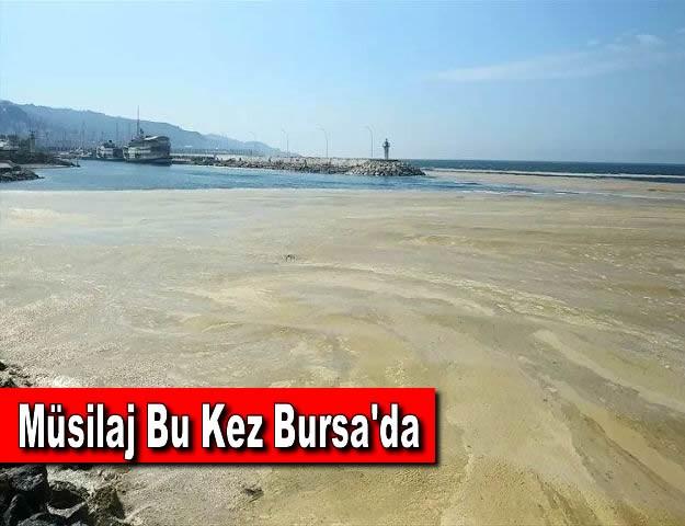 Müsilaj Bu Kez Bursa'da