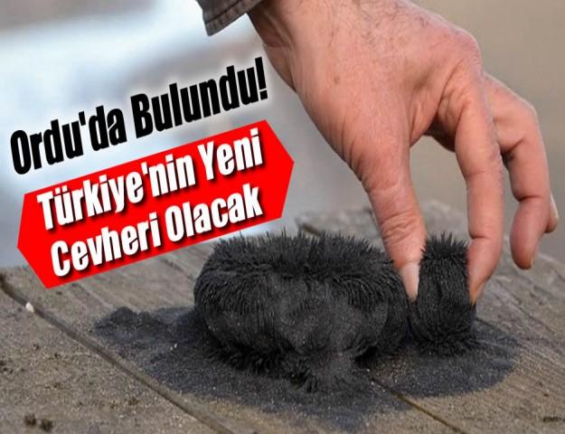 Ordu'da Bulundu! Türkiye'nin Yeni Cevheri Olacak...