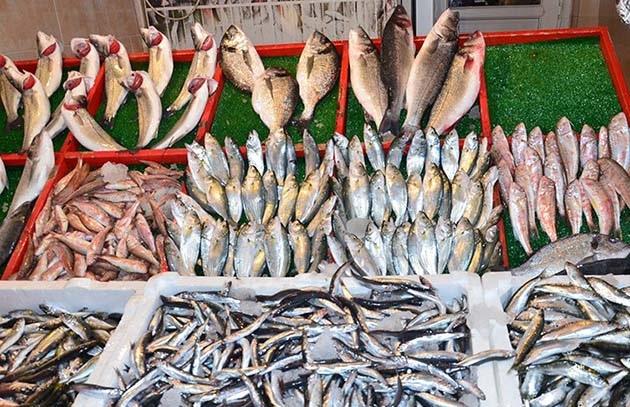 Balık Fiyatları Yükseldi