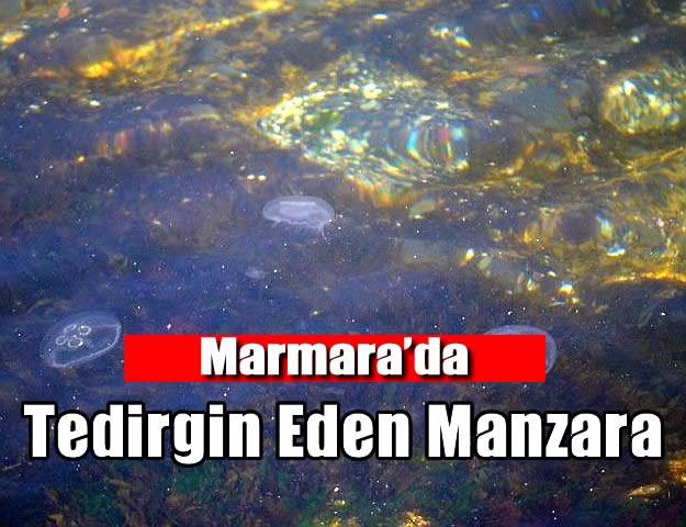 Marmara'da Tedirgin Eden Manzara