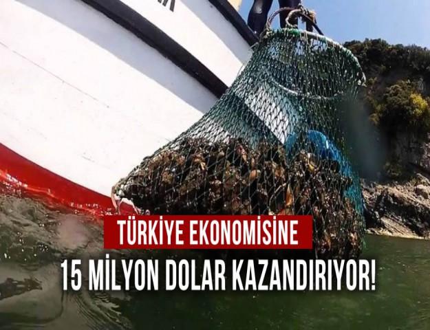 Türkiye Ekonomisine 15 Milyon Dolar Kazandırıyor!