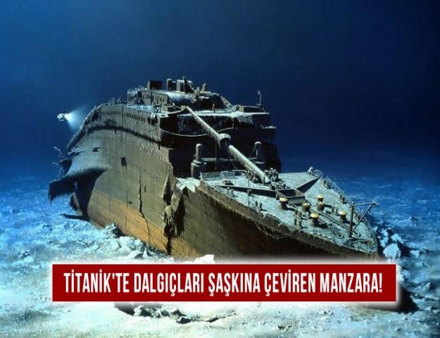 Titanik'te, Dalgıçları Şaşkına Çeviren Manzara!