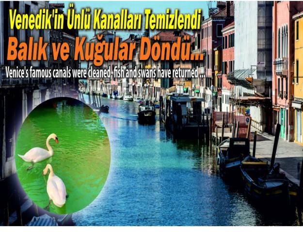Venedik'in Ünlü Kanalları Temizlendi Balık ve Kuğular Döndü...