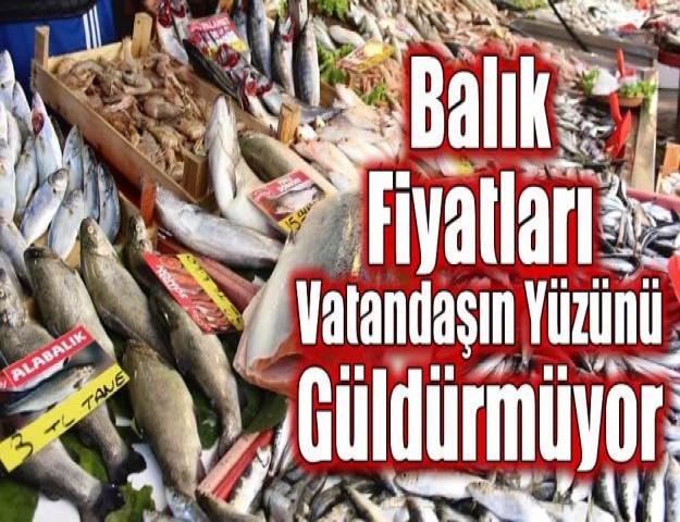 Balık Fiyatları Vatandaşın Yüzünü Güldürmüyor