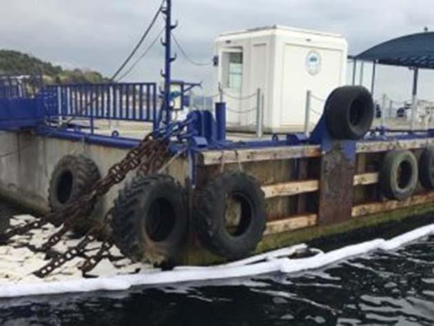 Darıca'da Denizdeki Kirliliğin Nedeni Araştırılıyor