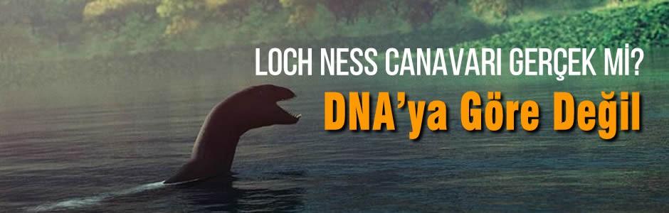 Loch Ness Canavarı Gerçek mi? DNA'ya Göre Değil