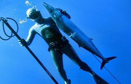 Zıpkınla balık avı milli takımı ka giriyor